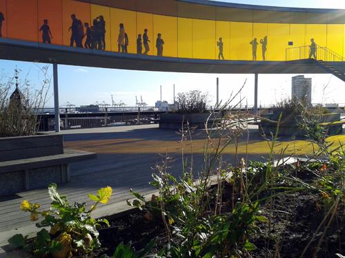 Auf dem Dach des dänischen Kunstmuseums wachsen Kräuter für das Museumsrestaurant.